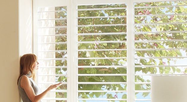 Hunter Douglas Palm Beach™ Polysatin™ Shutters Window Shutters Plantation Shutters Wood Shutters near Fredericksburg, Virginia (VA)